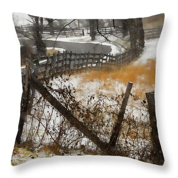 Rural Route Throw Pillow by Ron Jones
