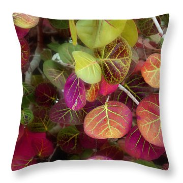 Sea Grape Throw Pillow by Joseph G Holland