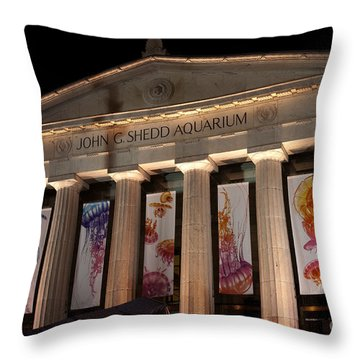 Shedd Aquarium With Jellyfish Exhibit Throw Pillow by Paul Velgos