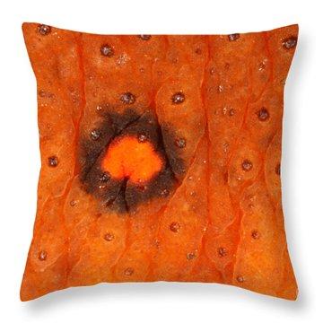 Skin Of Eastern Newt Throw Pillow