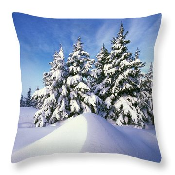 Snow-covered Pine Trees Throw Pillow by Natural Selection Craig Tuttle