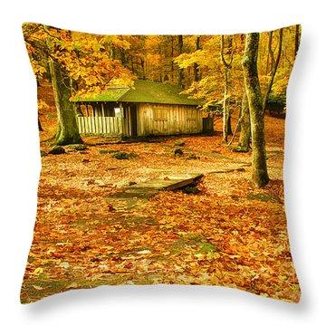 Solitude Throw Pillow by Darren Fisher