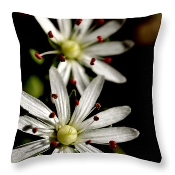 Star Chickweed Throw Pillow by Thomas R Fletcher