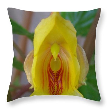 Subdued Throw Pillow by Tina Marie