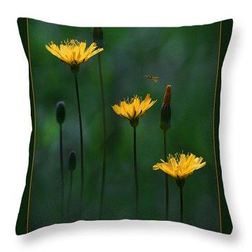 Summer Dining Throw Pillow by Ron Jones