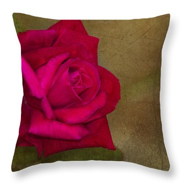 Summer's End Throw Pillow by Anne Rodkin