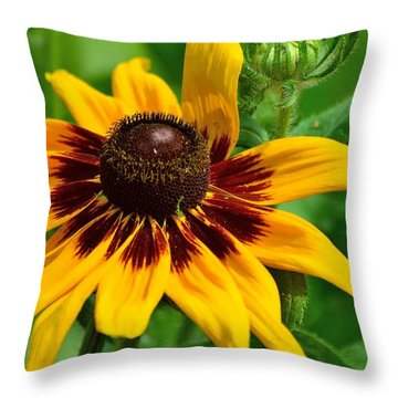 Sunflower Throw Pillow by Kathy King