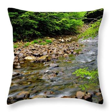 Tea Creek Monongahela National Forest Throw Pillow by Thomas R Fletcher