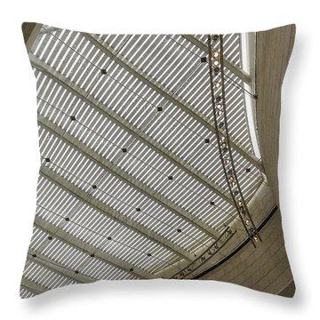 Telfair Sun Screen And Skylight Detail Throw Pillow by Lynn Palmer