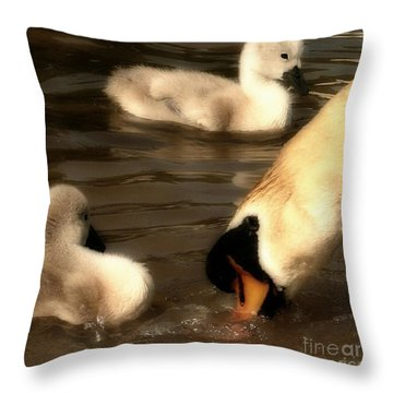 The Lesson Throw Pillow