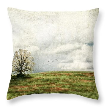 The Lone Tree Throw Pillow by Darren Fisher