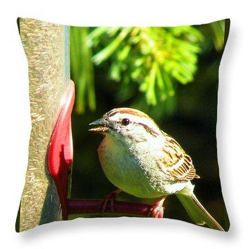 The Sparrow Throw Pillow by J Jaiam