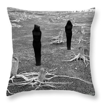 The Visitors Throw Pillow by Bob Christopher