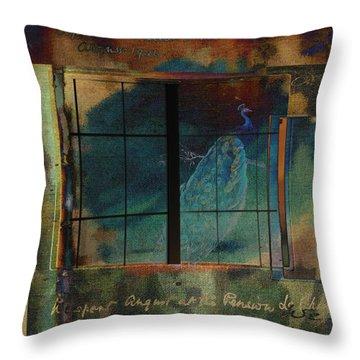 Through A Glass Darkly Throw Pillow by Sarah Vernon