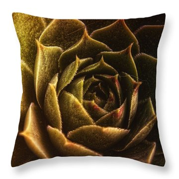 Timeless Throw Pillow by Mimulux patricia no No