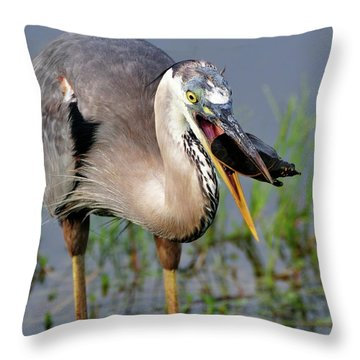 Toss And Catch Throw Pillow