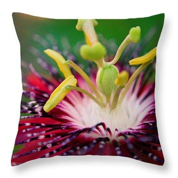 Treasured Throw Pillow by Melanie Moraga