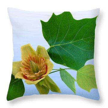 Tulip Poplar Tulip Throw Pillow by Kristin Elmquist