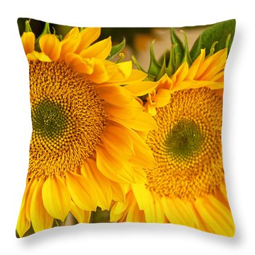 Twins Throw Pillow by Bob and Nancy Kendrick