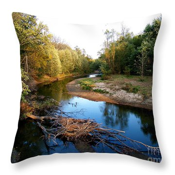 Twisted Creek Throw Pillow
