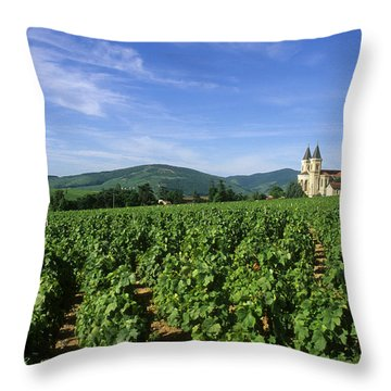 Vineyard. Regnie-durette. Beaujolais Wine Growing Area. Departement Rhone. Region Rhone-alpes. Franc Throw Pillow by Bernard Jaubert