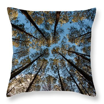 Whispering Pines Throw Pillow by Dan Wells