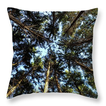 Throw Pillow featuring the photograph Whispering Pines by Rachel Cohen