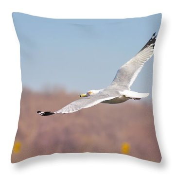 Wingspan Throw Pillow by Bill Cannon