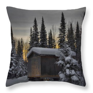 Winter Solitude Throw Pillow by Heather  Rivet