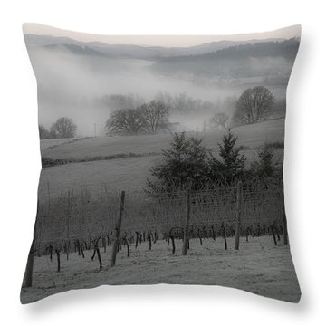 Winter Vineyard Throw Pillow by Jean Noren