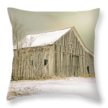 Throw Pillow featuring the photograph Winter's Barn by Mary Timman