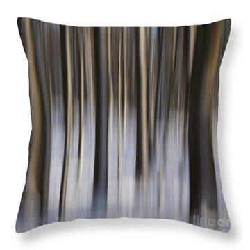 Woodland Fantasy Throw Pillow by Heiko Koehrer-Wagner