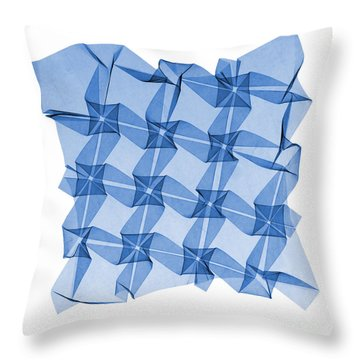 X-ray Of Mathematical Origami Throw Pillow by Ted Kinsman