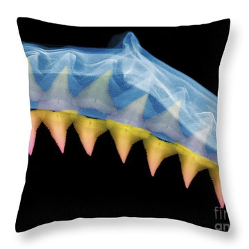 X-ray Of Shark Jaws Throw Pillow by Ted Kinsman