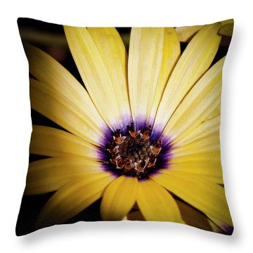 Yellow Daisy Throw Pillow by David Patterson