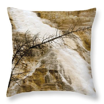 Throw Pillow featuring the photograph Yellowstone Color by J L Woody Wooden
