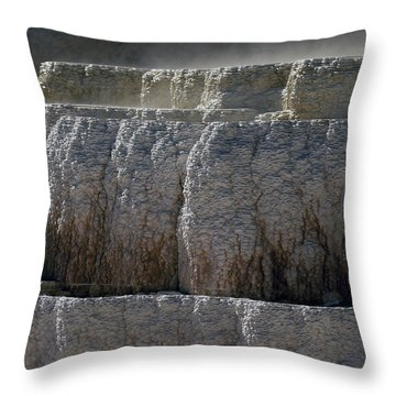 Throw Pillow featuring the photograph Yellowstone Texture by J L Woody Wooden