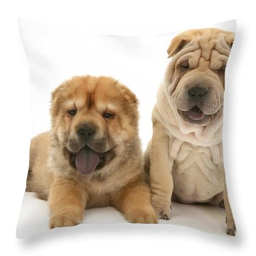 Young Dogs Throw Pillow by Jane Burton