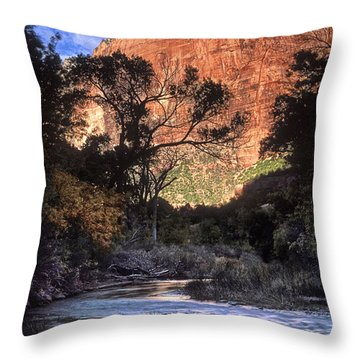 Zion National Park View Throw Pillow by Dave Mills