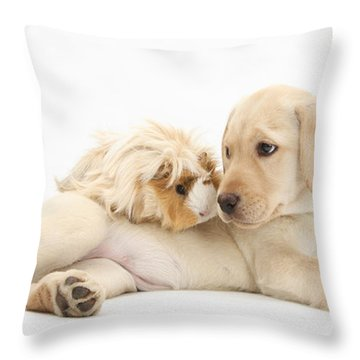 Puppy And Guinea Pig Throw Pillow by Mark Taylor