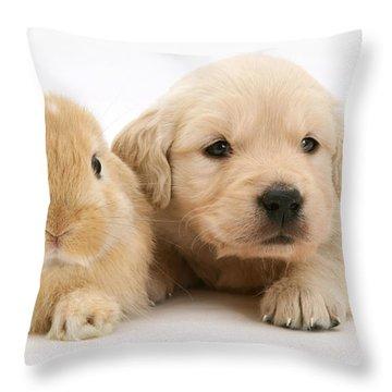 Rabbit And Puppy Throw Pillow by Jane Burton