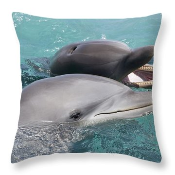 Atlantic Bottlenose Dolphins Throw Pillow by Dave Fleetham