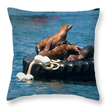 Monterey Harbour Throw Pillow by Carol Ailles