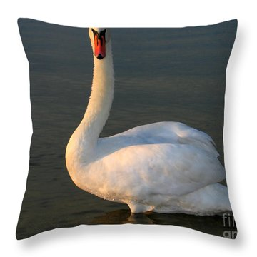 Swan Throw Pillow by Odon Czintos