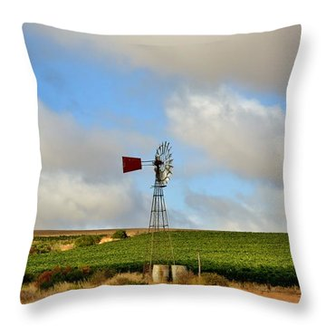Water Pump Windmill Throw Pillow by Werner Lehmann