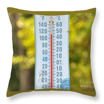 110 Degrees In The Shade Throw Pillow by Al Powell Photography USA