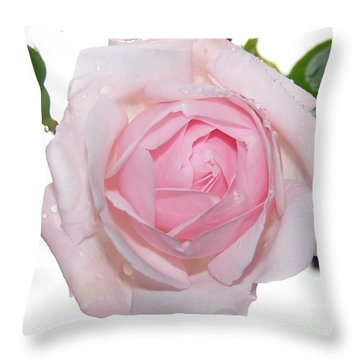 Rose Throw Pillow by Sylvie Leandre