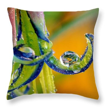 Billbergia Nutans Queen's Tears Throw Pillow