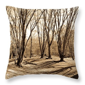 Ambresbury Banks Bronze Age Fortification Throw Pillow by David Pyatt