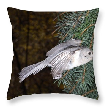 Tufted Titmouse In Flight Throw Pillow